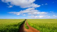 farmland pic for blog